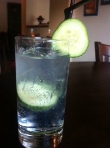 gin and tonic with Tanqueray gin