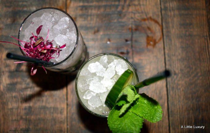 cocktails at the botanist birmingham